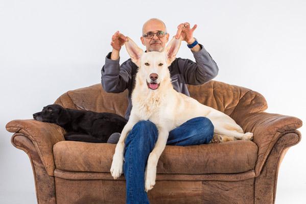 Hund mit langen Ohren